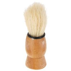 Poola habemeajamis pintsel