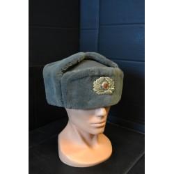 NVA Officer Winter Cap, grey